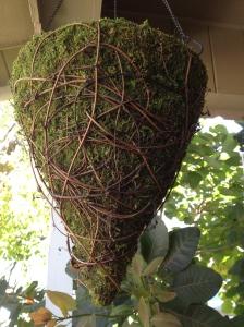 Hanging Moss Planter